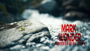 Mark Wonder Another Day